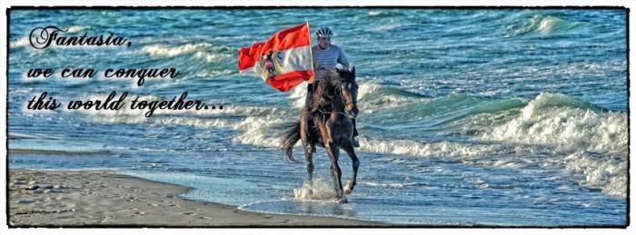 Willkommen auf www.pferdefotografie.at